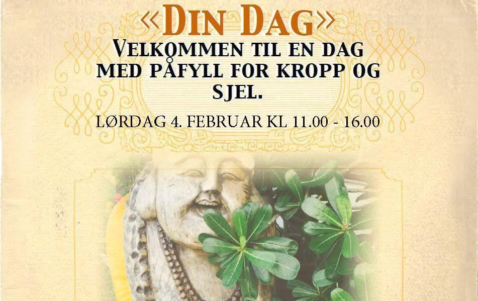 Din Dag_04.02.17_grafikk